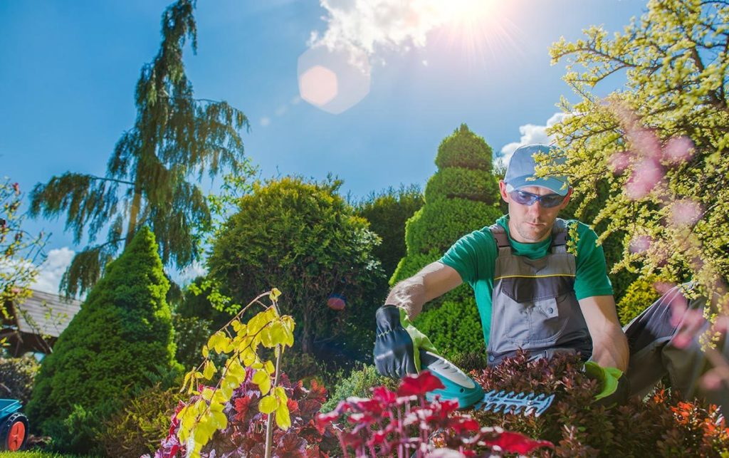 A Scott's Lawn Care worker helps a yard grow greener this summer.